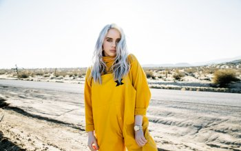 HD Wallpaper | Background Image ID:1004878. 2160x1440 Music Billie Eilish
