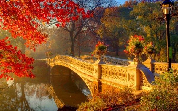 Man Made Bridge Bridges Bow Bridge Central Park Fall HD Wallpaper | Background Image