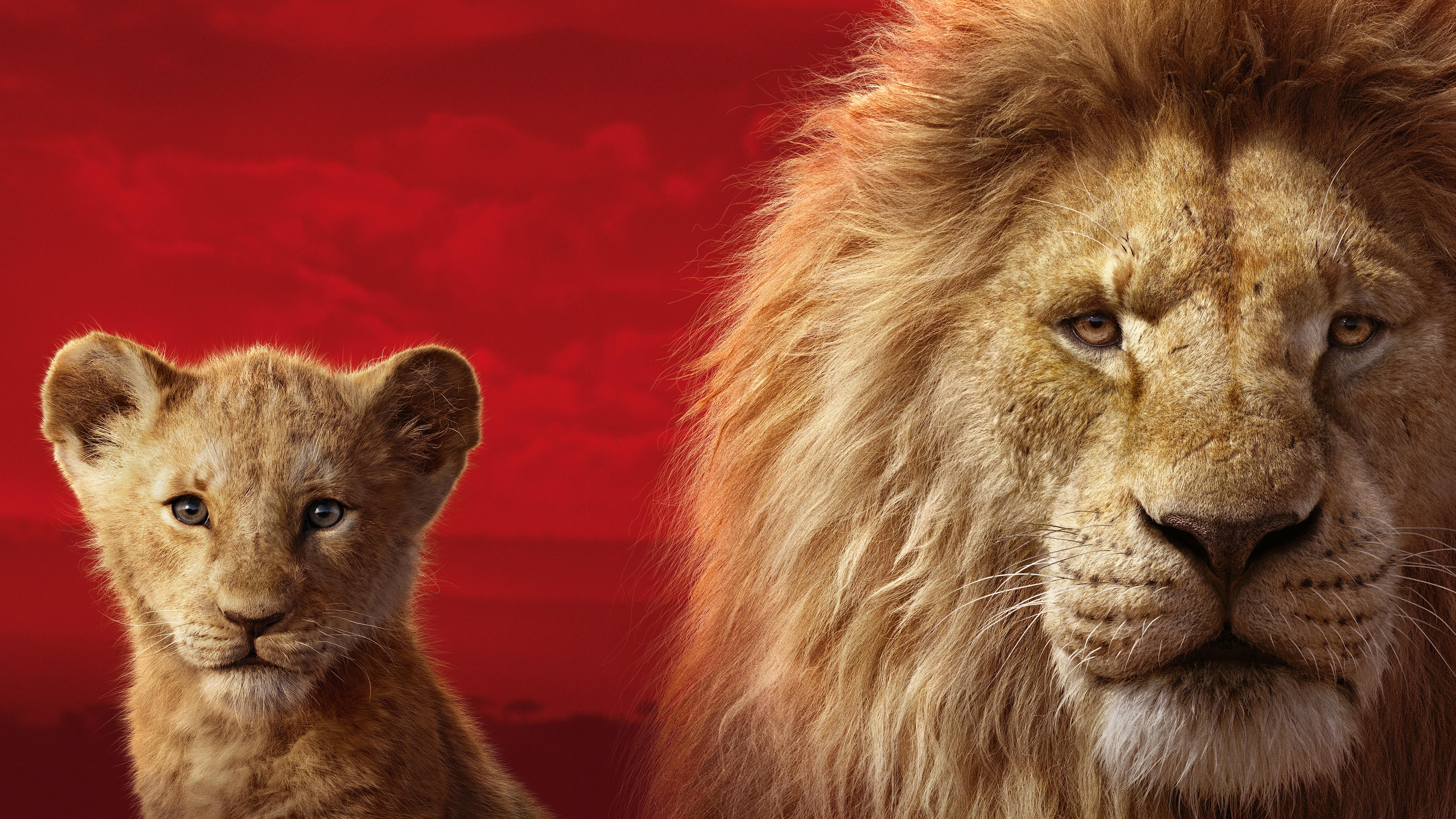 The Lion King 2019 5k Retina Ultra Hd Wallpaper