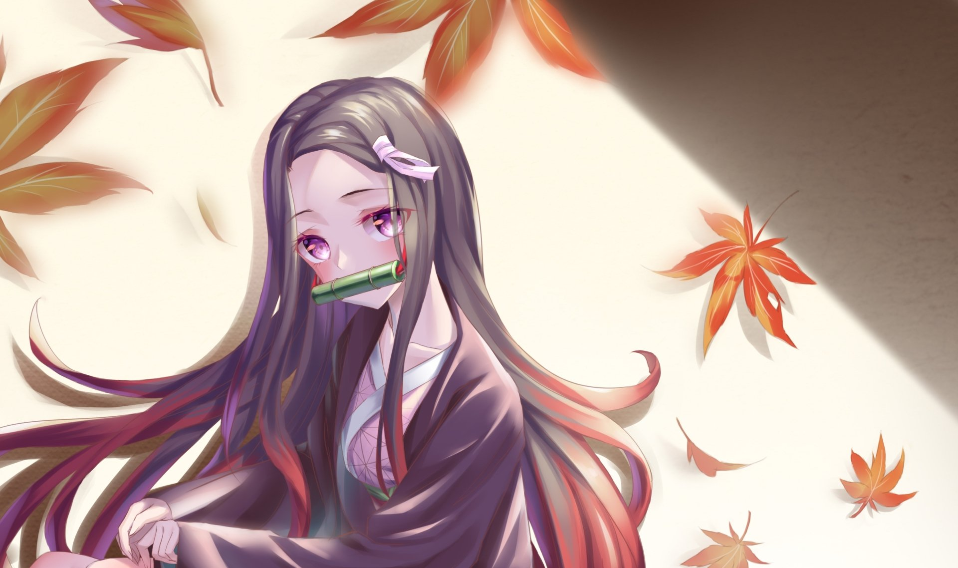 Wallpapers ID:1024024