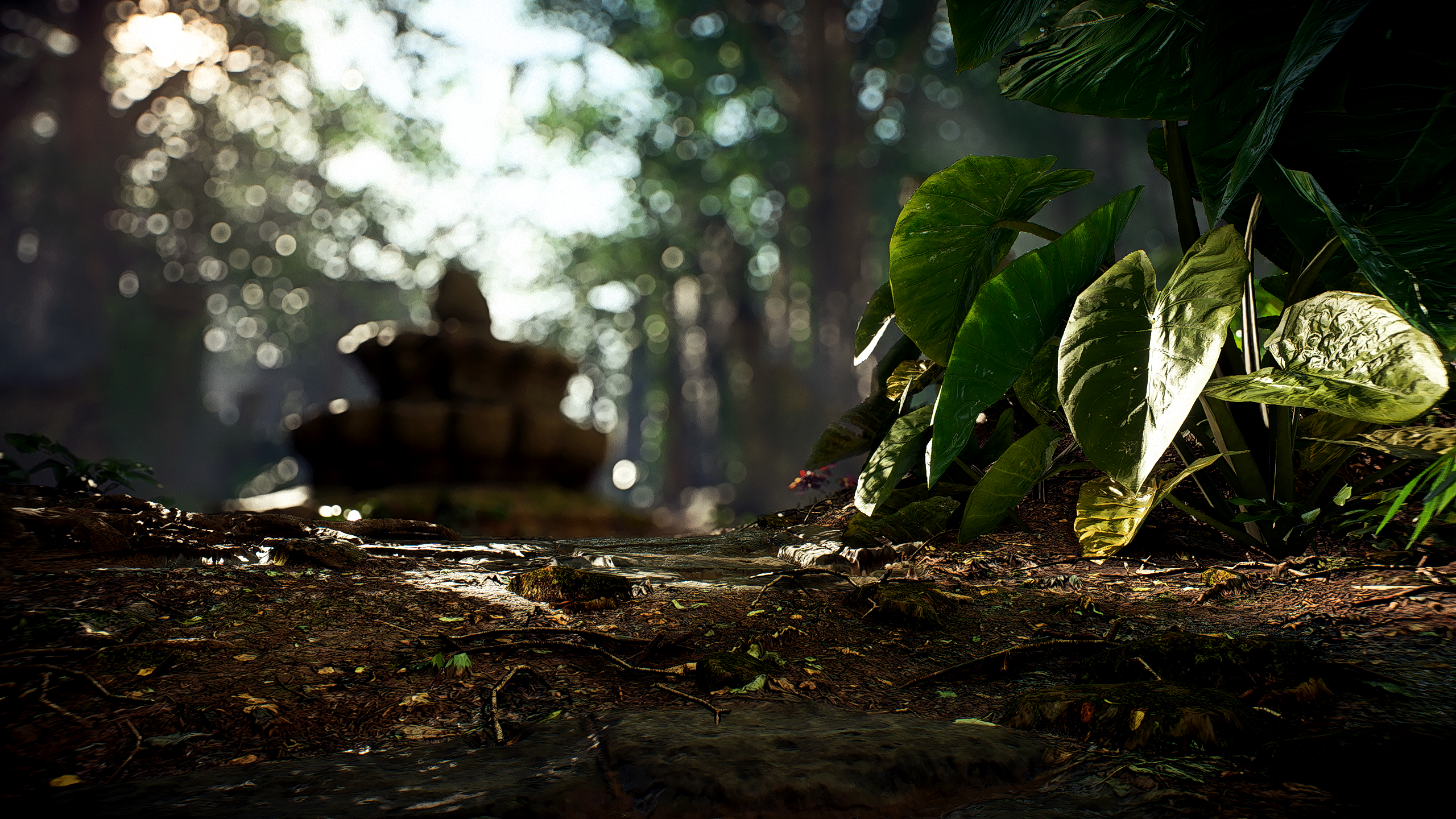 Star Wars Forest Ii Hd Wallpaper Background Image 2560x1440 Id 1059543 Wallpaper Abyss