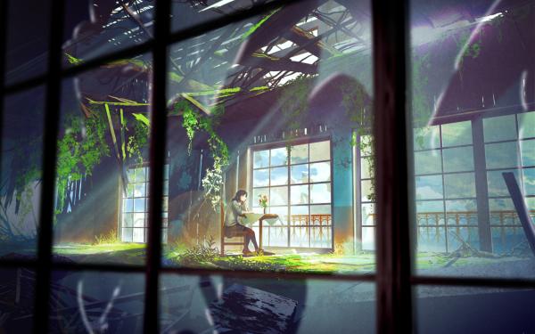 Anime Original Greenery Table Abandoned Glass Window HD Wallpaper | Background Image