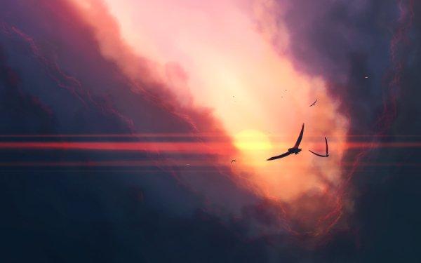 Artistic Sky Bird HD Wallpaper   Background Image