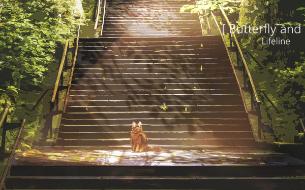 Anime Cat HD Wallpaper | Background Image