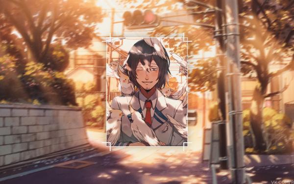 Anime My Hero Academia Shota Aizawa HD Wallpaper | Background Image