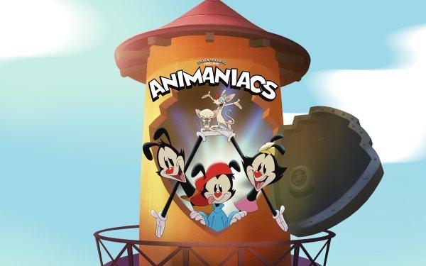 TV Show Animaniacs (2020) Dot Warner Wakko Warner Yakko Warner HD Wallpaper   Background Image