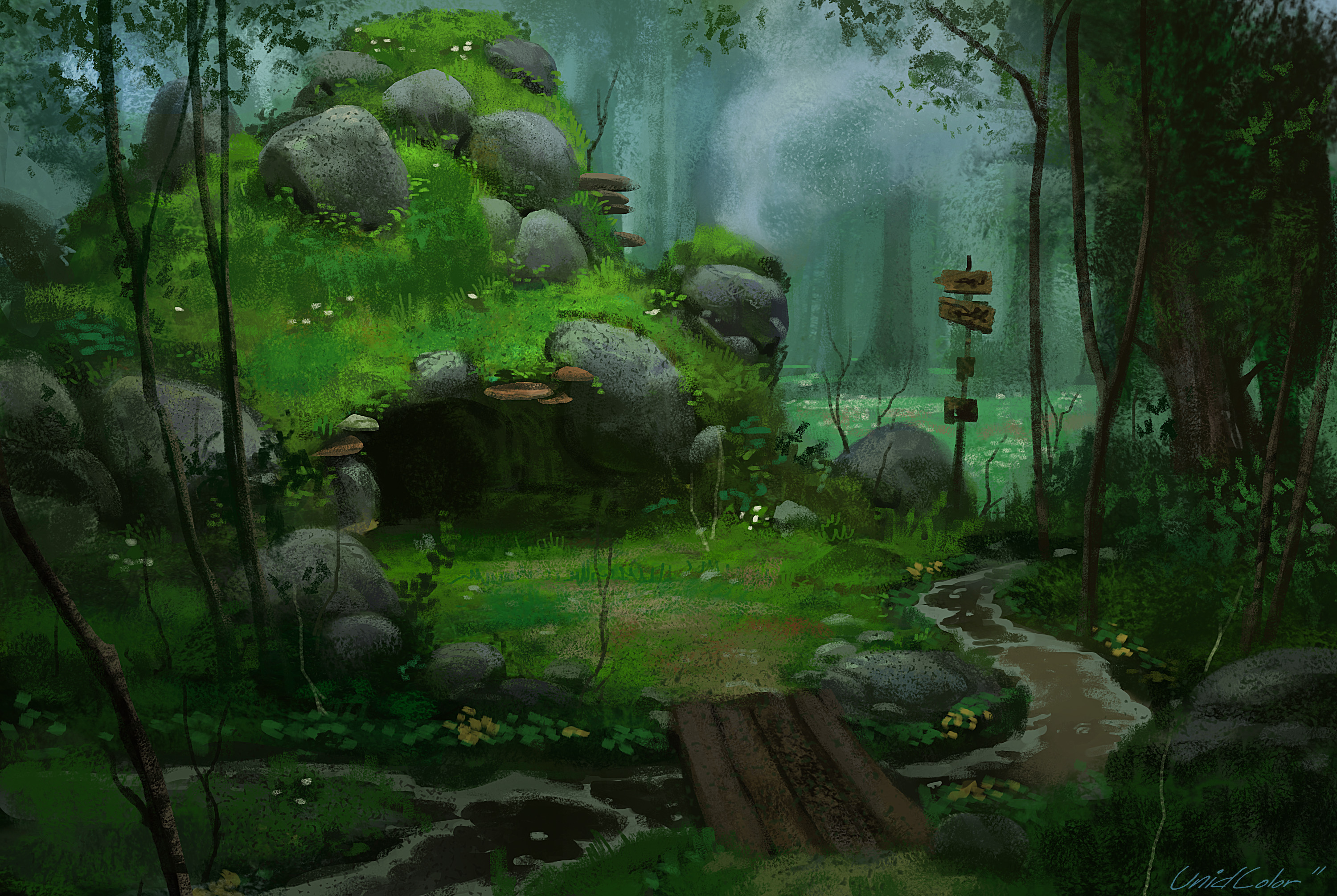 Forest full hd wallpaper and background image 3000x2011 for Wallpaper home cartoon