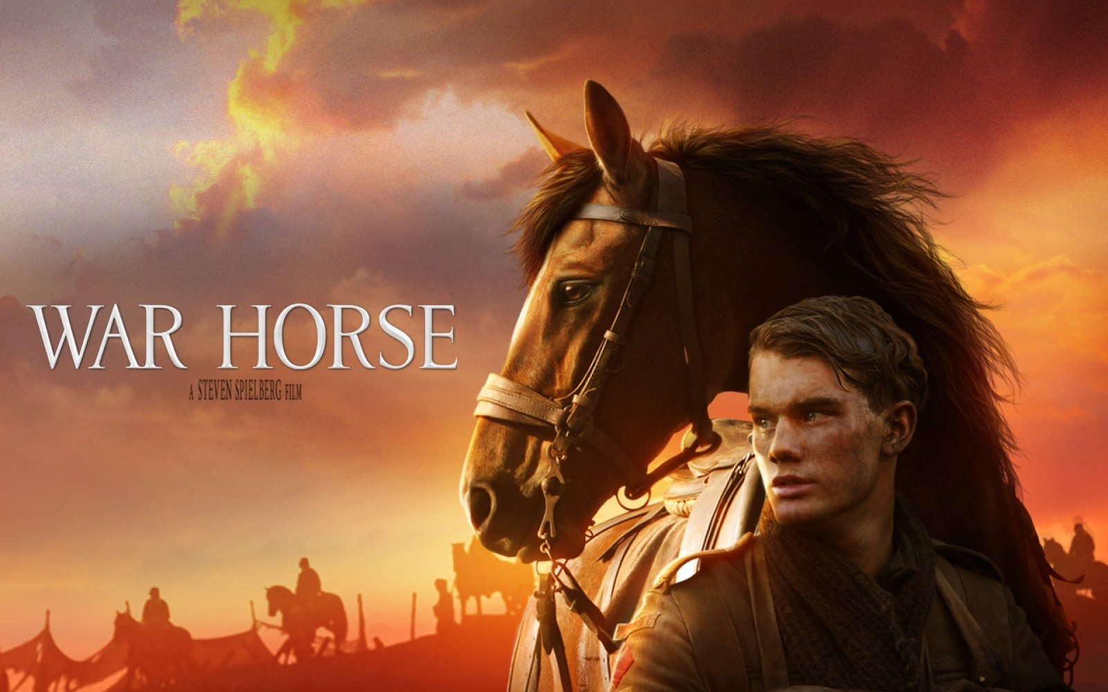 2 War Horse Hd Wallpapers Background Images Wallpaper Abyss