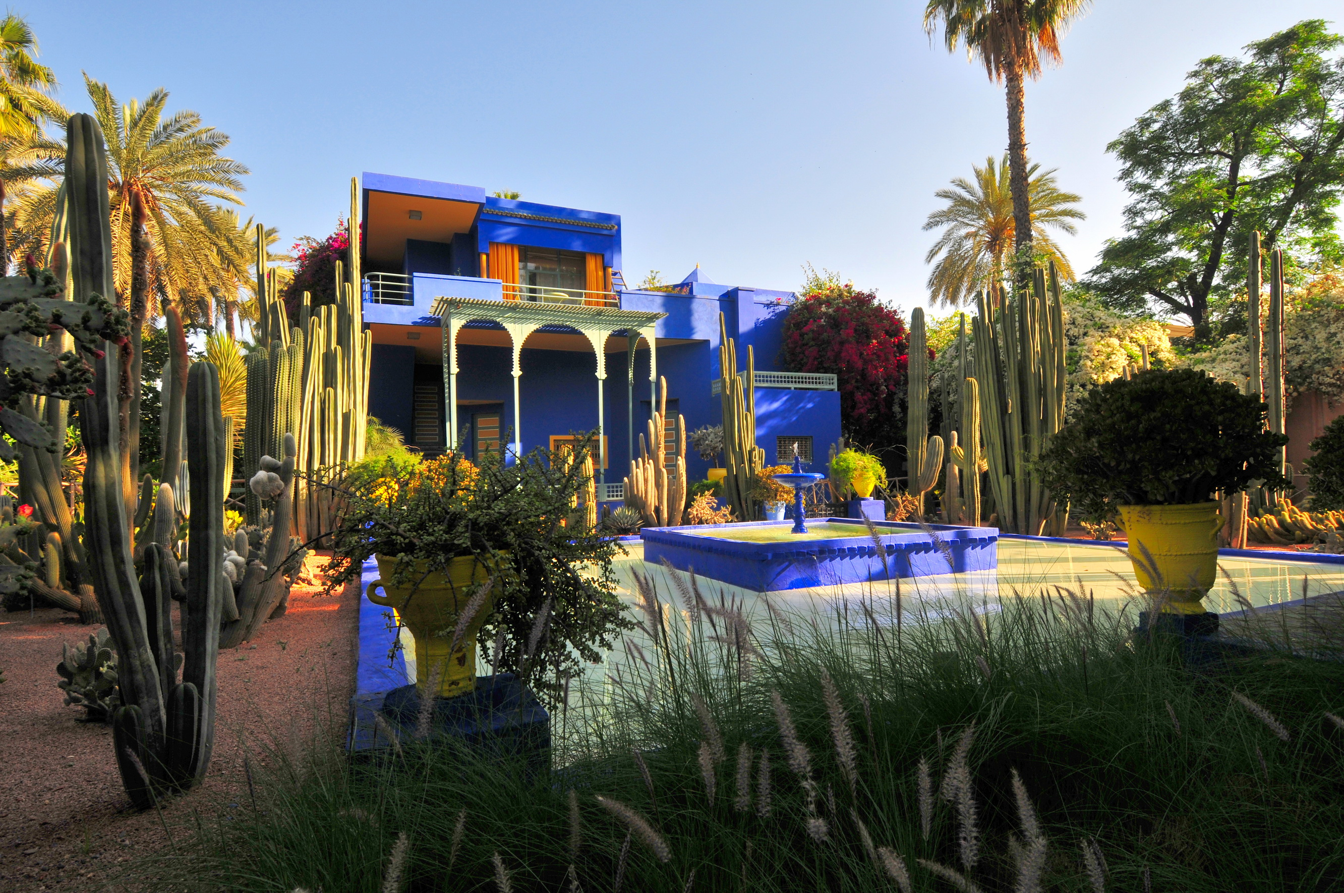 Morocco marrakech jardin majorelle full hd bakgrund and for Le jardin yves saint laurent marrakech