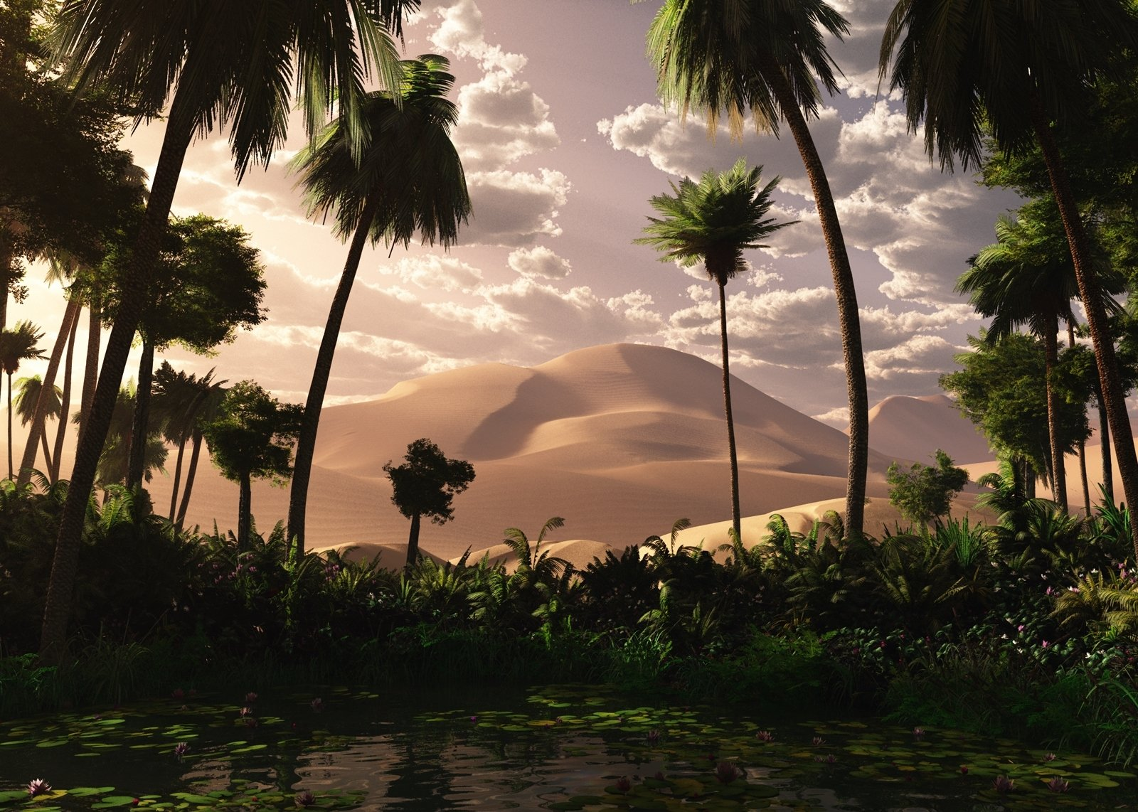 oasis landscape wallpapers archives - photo #18