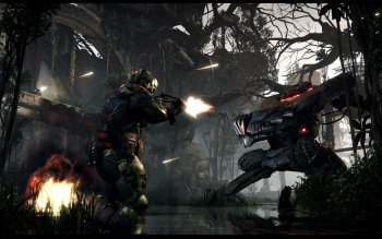 Computerspiel - Crysis 3 Wallpapers and Backgrounds ID : 292627