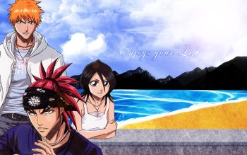 Anime - Bleach Wallpapers and Backgrounds ID : 295419