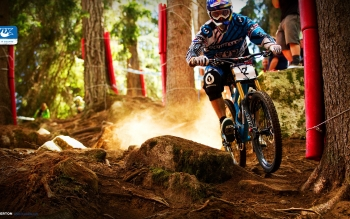 Sports - Bicycle Wallpapers and Backgrounds ID : 298685
