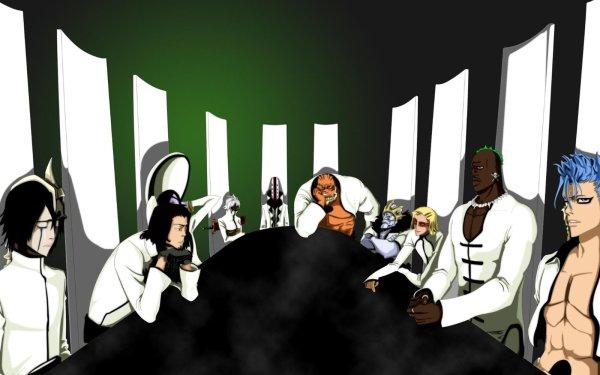 Anime Bleach Ulquiorra Cifer Coyote Starrk Tier Halibel Aaroniero Arruruerie Yammy Llargo Baraggan Louisenbairn Szayelaporro Granz Grimmjow Jaegerjaquez Zommari Rureaux HD Wallpaper | Background Image