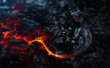 Fantasy - Dragon Wallpapers and Backgrounds ID : 301917