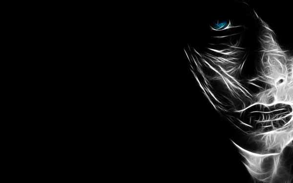 HD Wallpaper | Background Image ID:301967