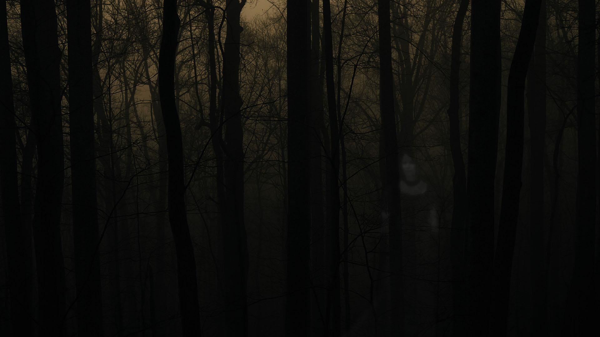 Haunted Forest HD Wallpaper