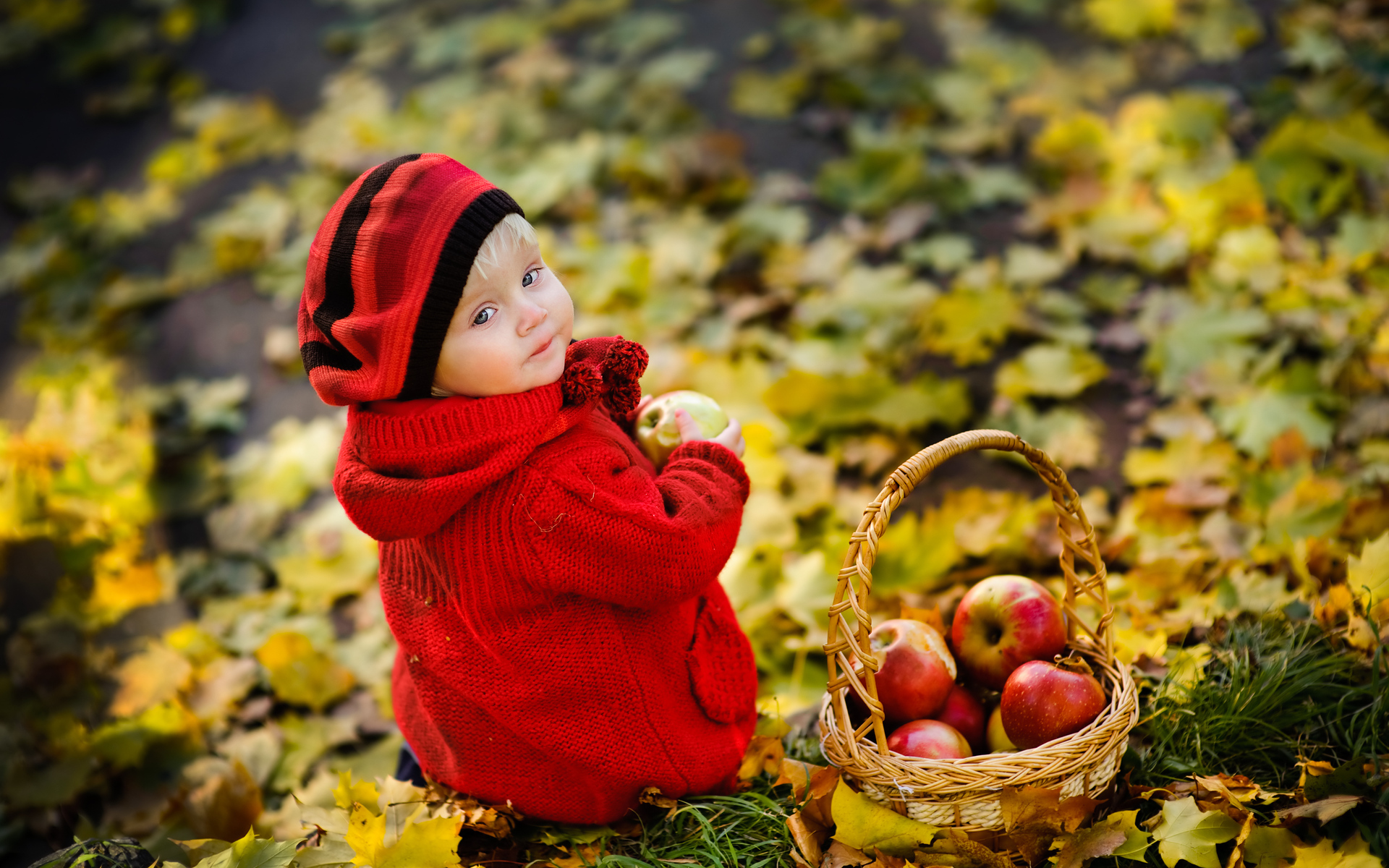 Baby HD Wallpaper | Background Image | 1920x1200 | ID ...