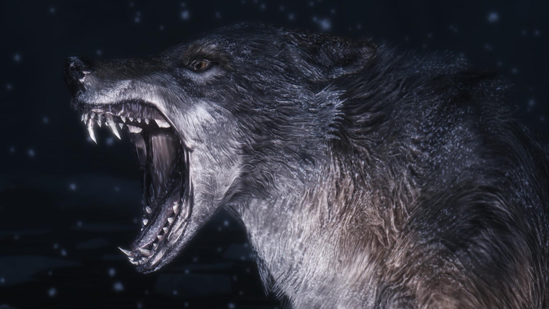 Teen Wolf Wallpaper Desktop