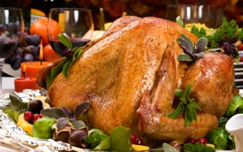 Holiday - Thanksgiving Wallpapers and Backgrounds ID : 311554