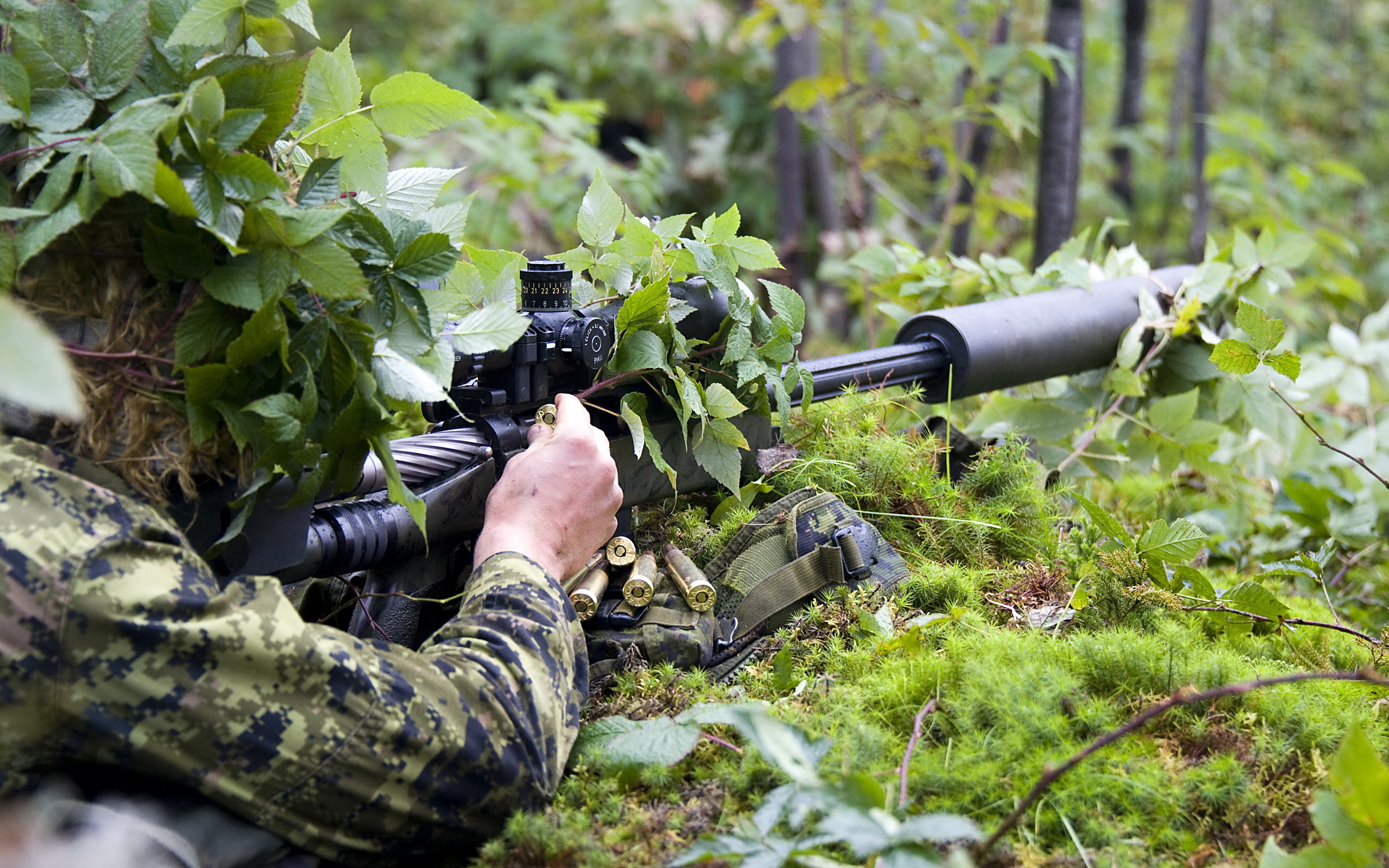 Sniper full hd wallpaper and background image 2560x1600 id313564 military sniper weapon gun forest jungle soldier wallpaper voltagebd Choice Image