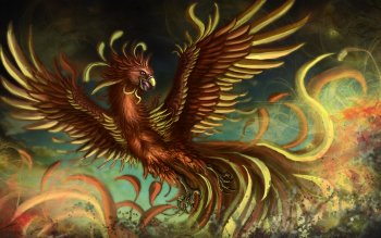 Fantasy - Phoenix Wallpapers and Backgrounds ID : 313303