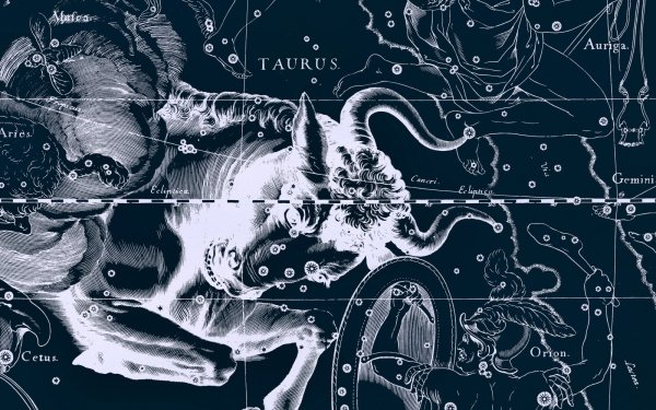 Fantasy Zodiac Zodiac Sign Horoscope Taurus HD Wallpaper | Background Image