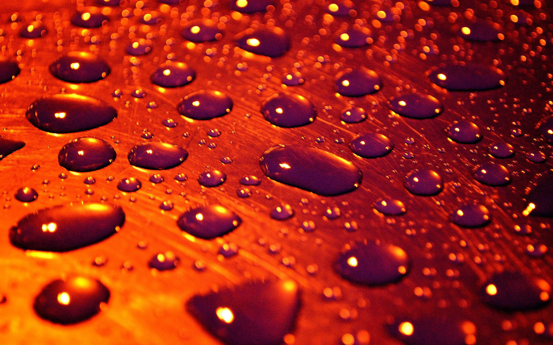 Water Drop Full HD Wallpaper and Background 1920x1200 ID315376