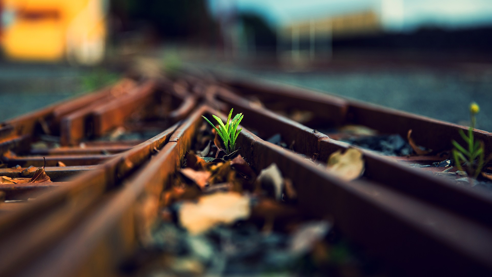 Background image rails - Man Made Railroad Wallpaper
