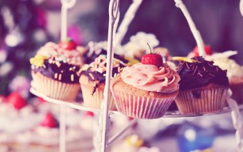 Alimento - Cupcake Wallpapers and Backgrounds ID : 319214