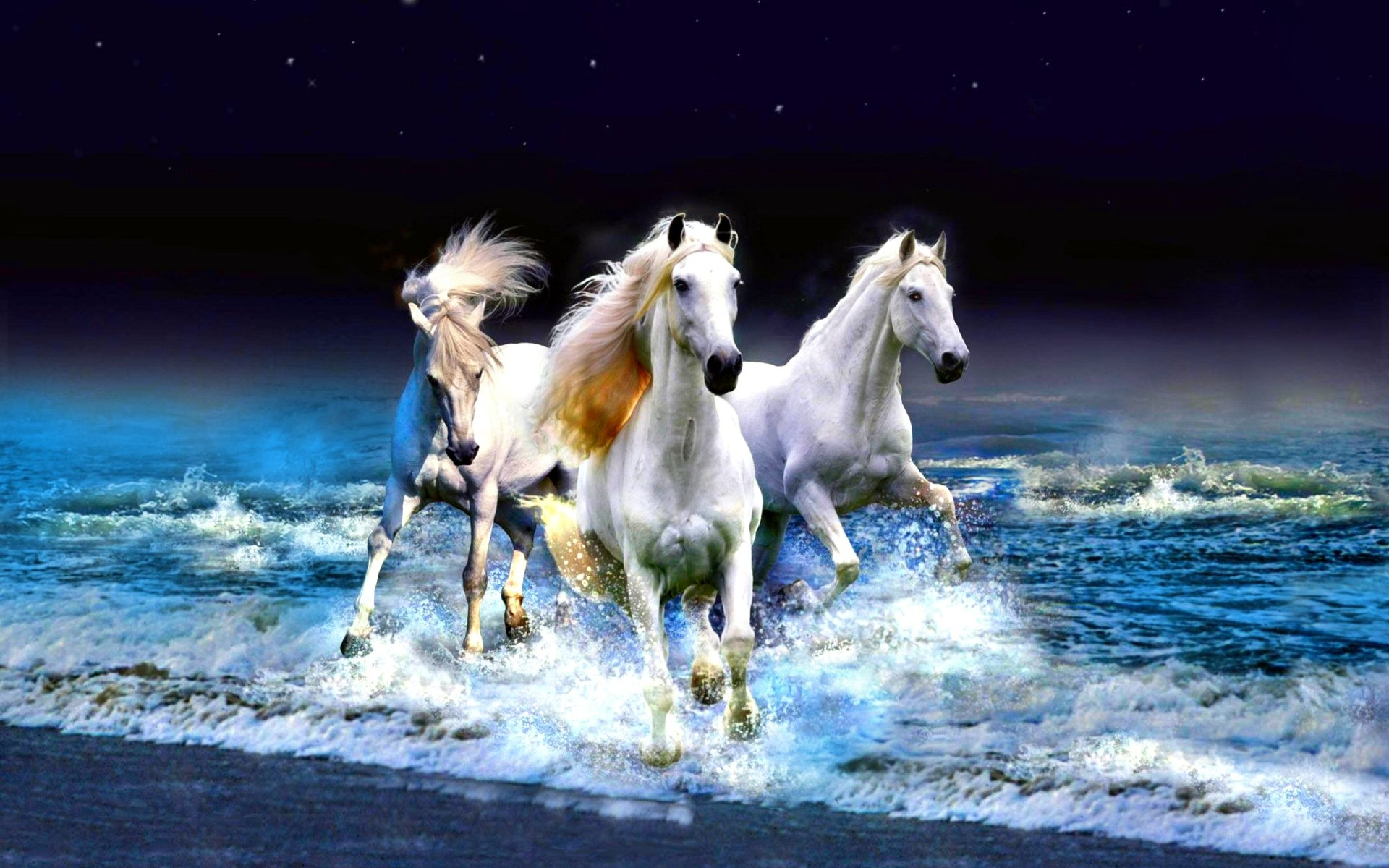 Wallpapers ID:321674