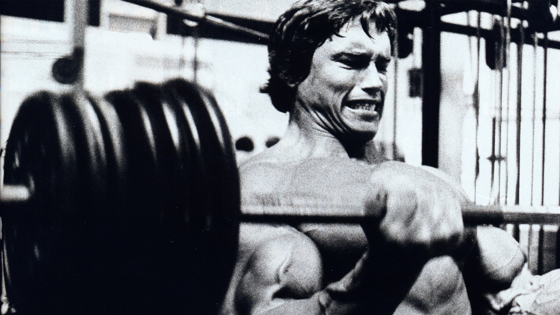 arnold schwarzenegger full hd wallpaper and background image