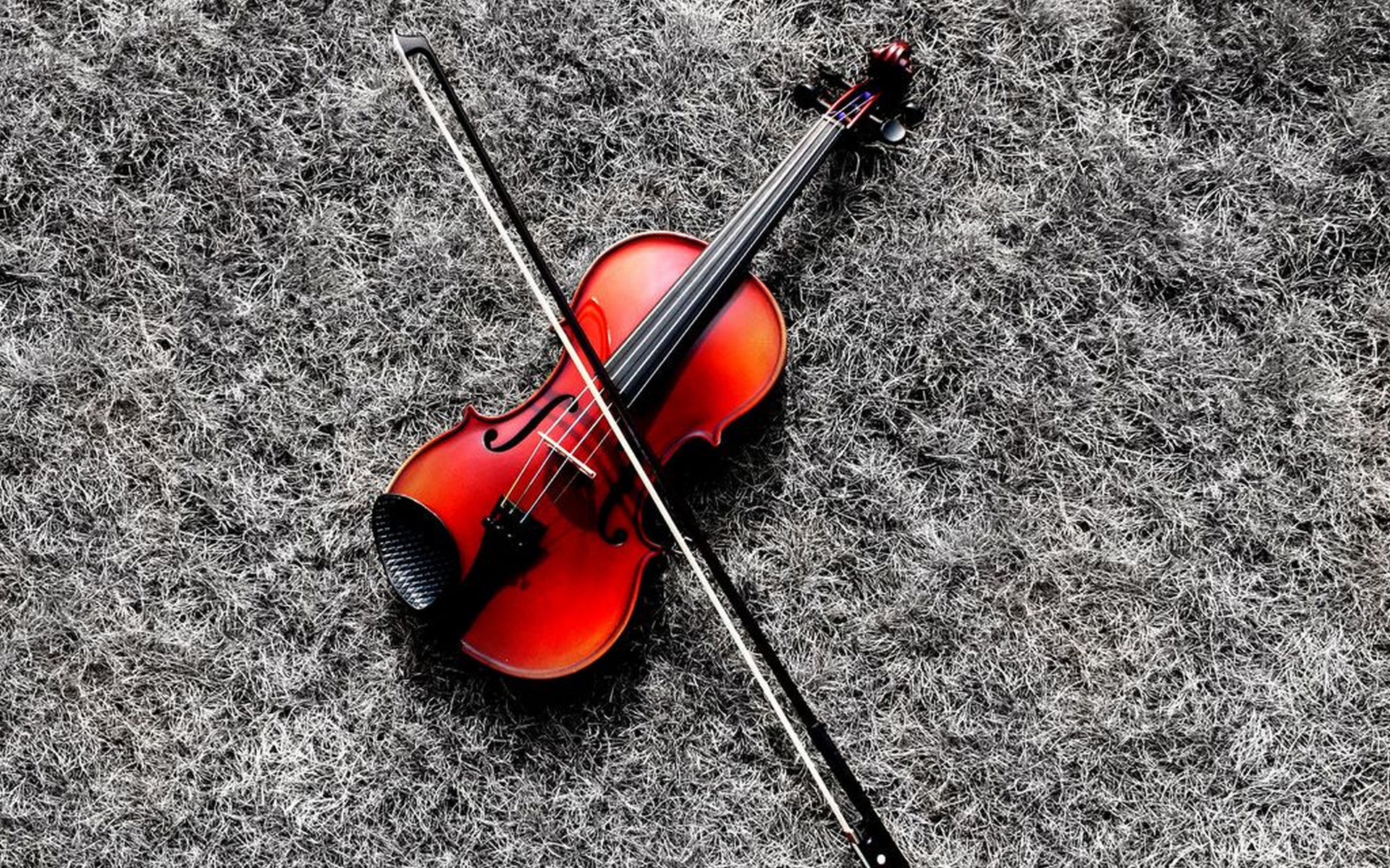Violin Full HD Wallpaper and Background | 1920x1200 | ID ...