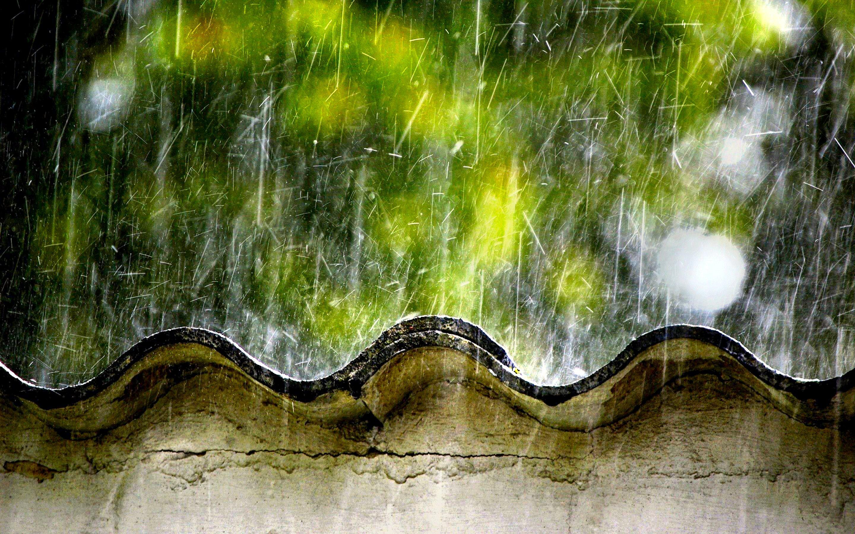Home Alone 00 Rainy Day 30november2012friday
