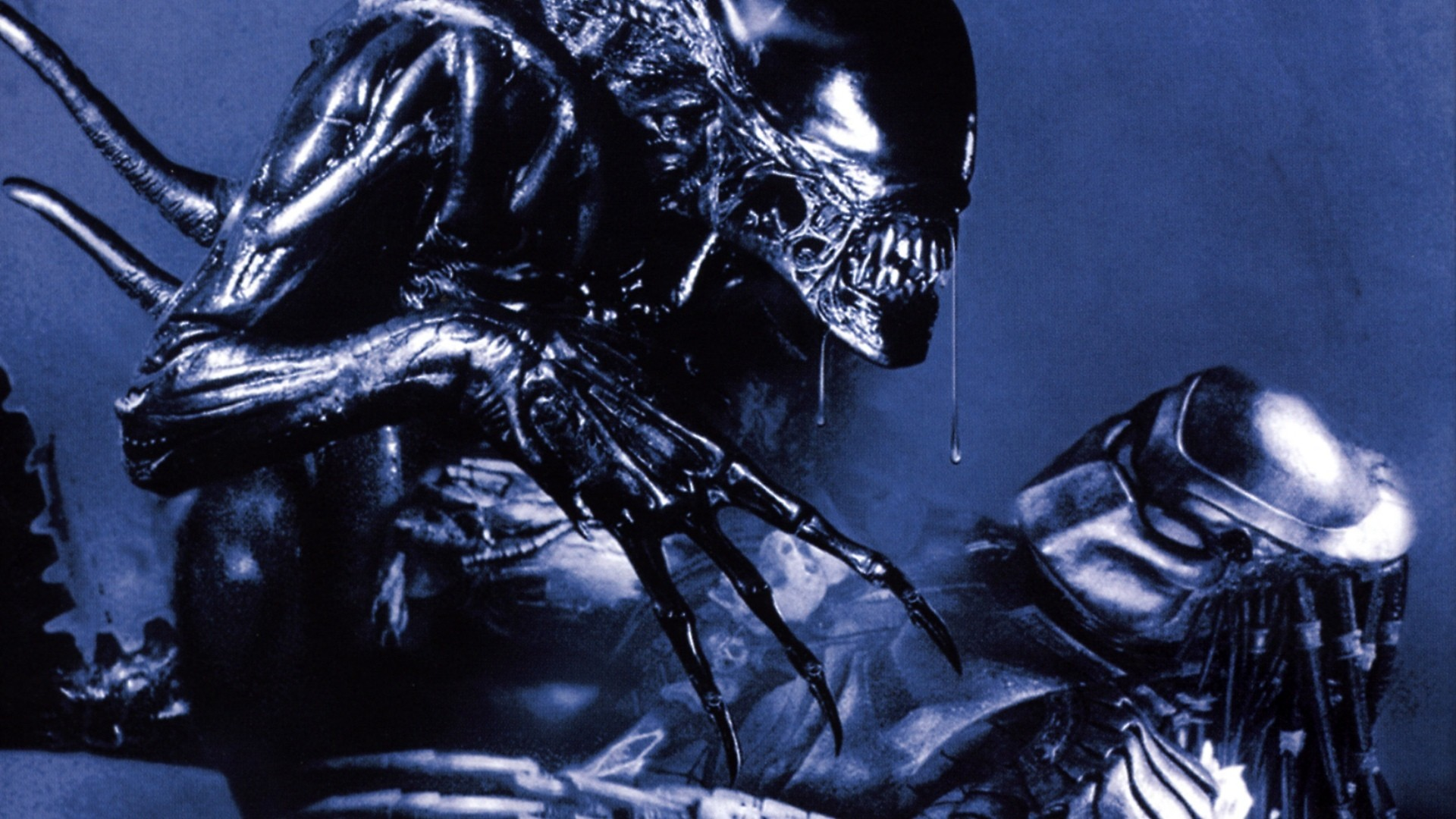 Alien Vs Predator Hd Wallpaper Background Image 1920x1080