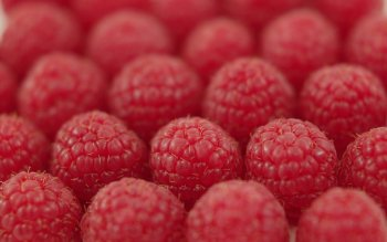 Alimento - Raspberry Wallpapers and Backgrounds ID : 328042