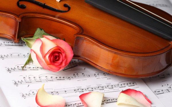 Musique Violon Fond d'écran HD   Image