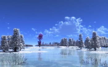 Artistic - Winter Wallpapers and Backgrounds ID : 330374