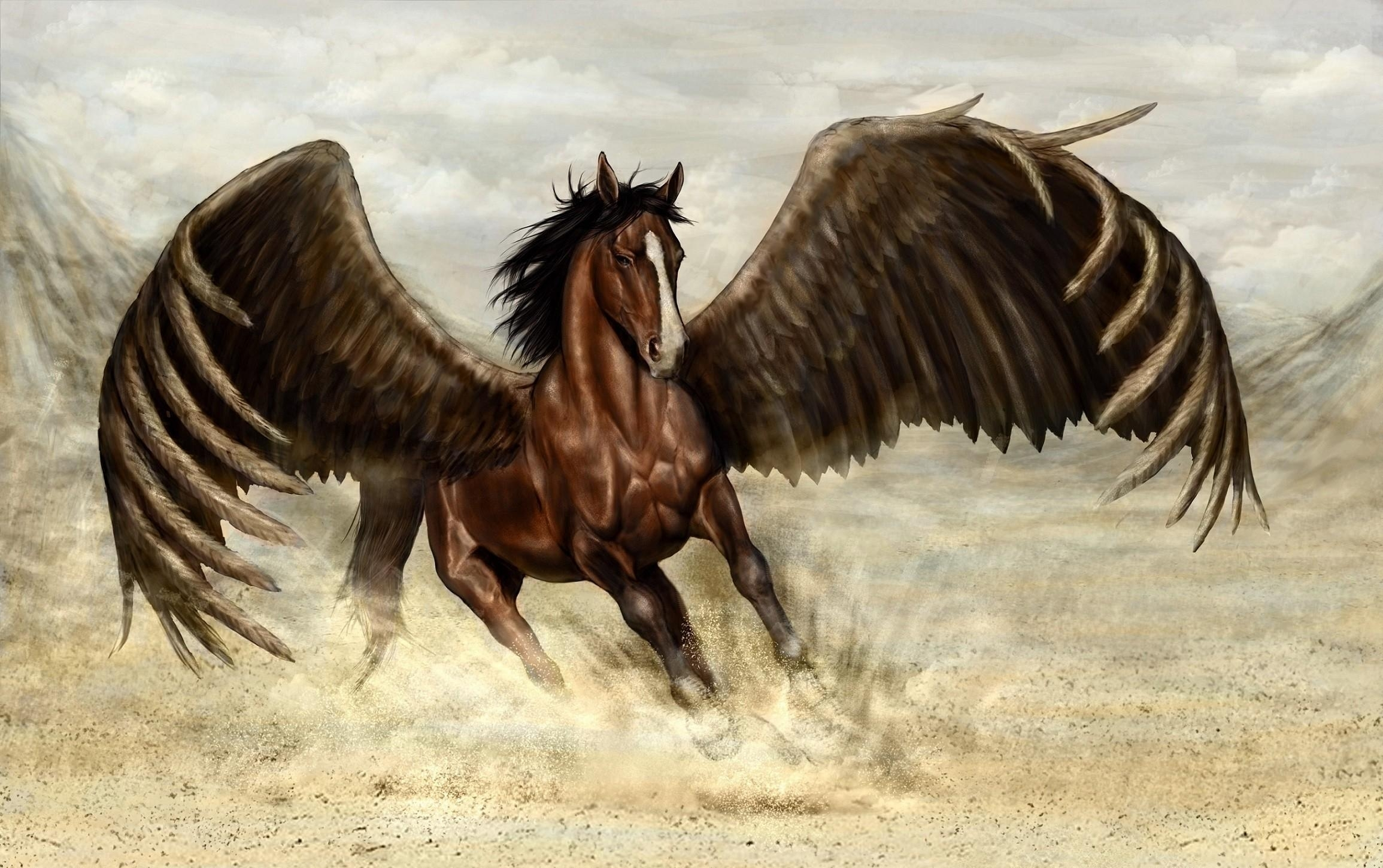 45 pegasus hd wallpapers backgrounds wallpaper abyss page 2