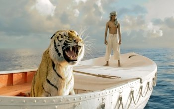 Films - Life Of Pi Wallpapers and Backgrounds ID : 333174