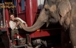 Preview Water For Elephants