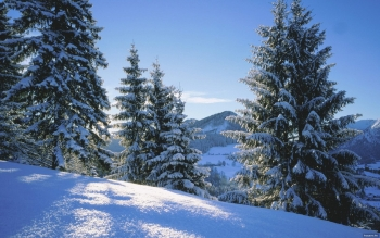 Earth - Winter Wallpapers and Backgrounds ID : 336990