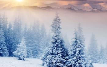 Earth - Winter Wallpapers and Backgrounds ID : 337390