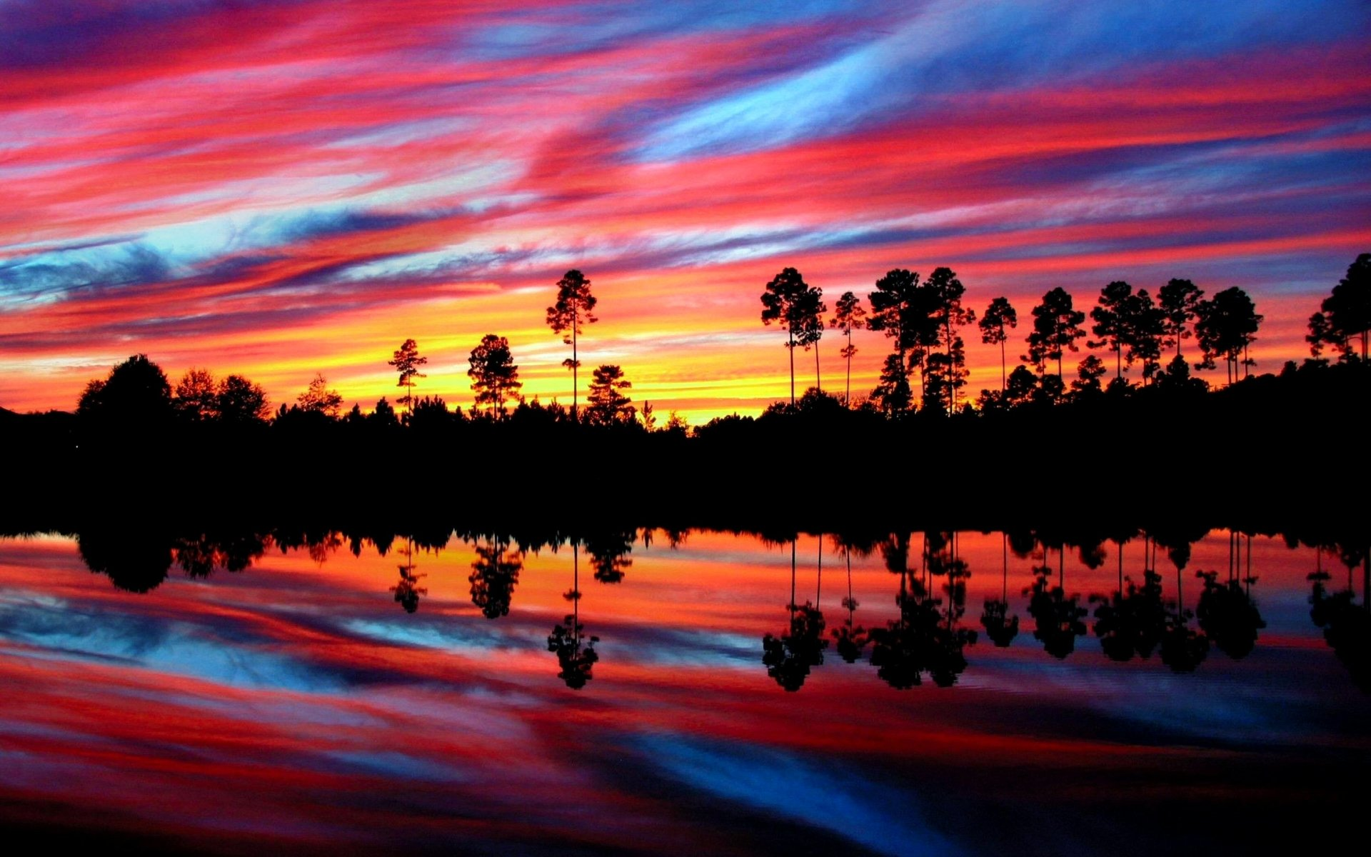 Earth - Sunset  Tree Colorful Red Blue Yellow Reflection Wallpaper