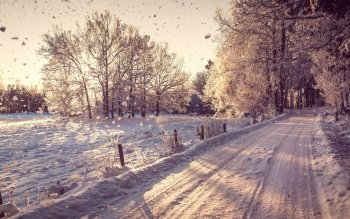 Tierra - Winter Wallpapers and Backgrounds ID : 338792