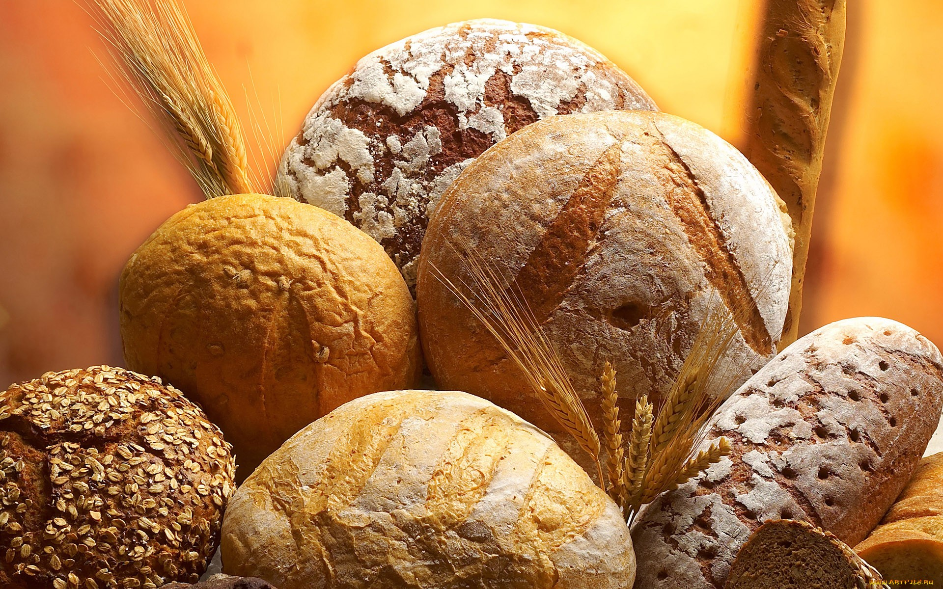Bread Full Hd Wallpaper And Background 1920x1200 Id 339417