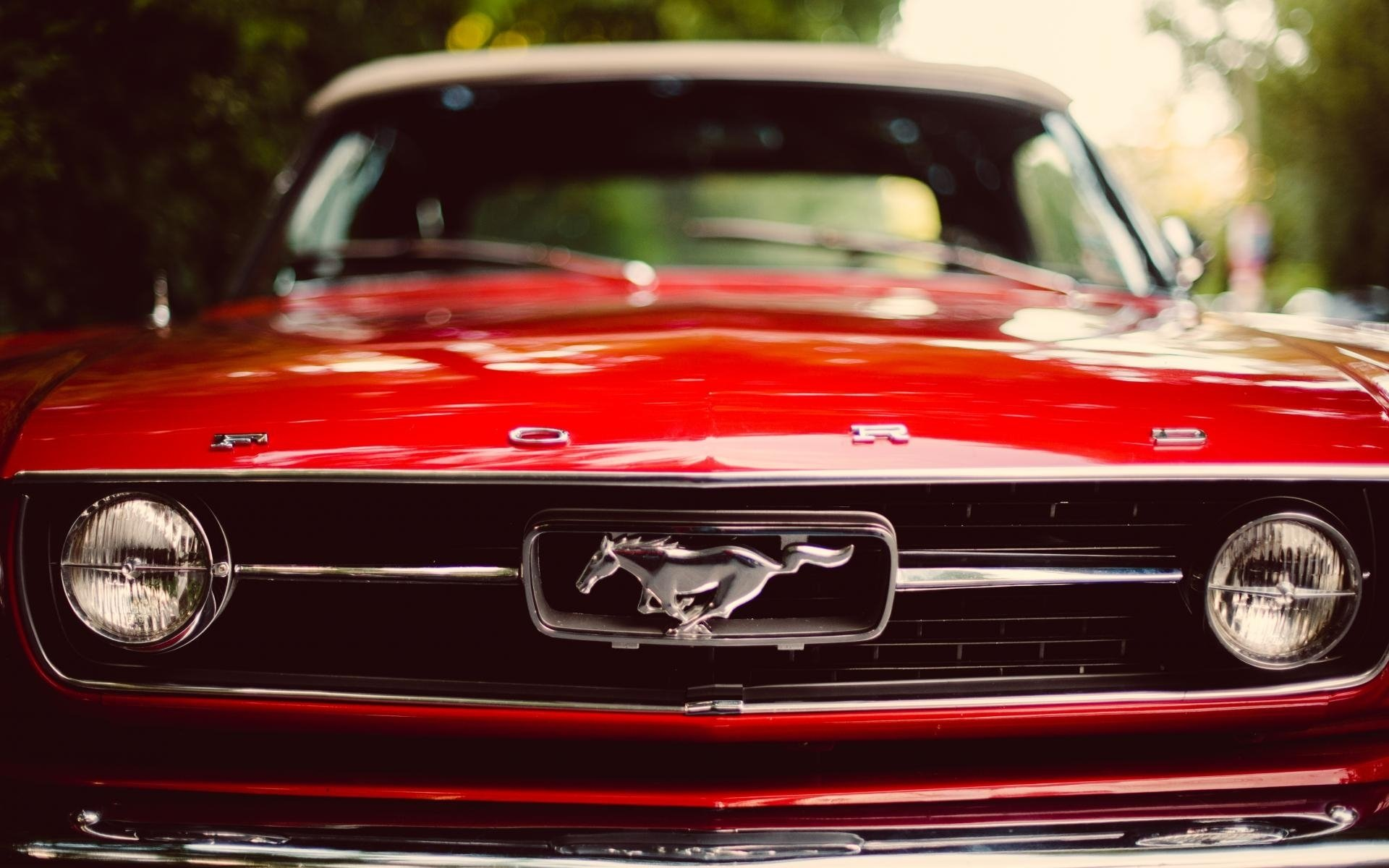 ford mustang hd wallpaper | background image | 1920x1200 | id:339071