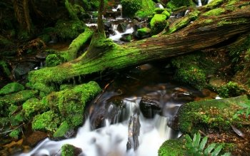 Earth - Stream Wallpapers and Backgrounds ID : 339332