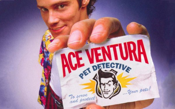 Movie Ace Ventura: Pet Detective Jim Carrey HD Wallpaper | Background Image