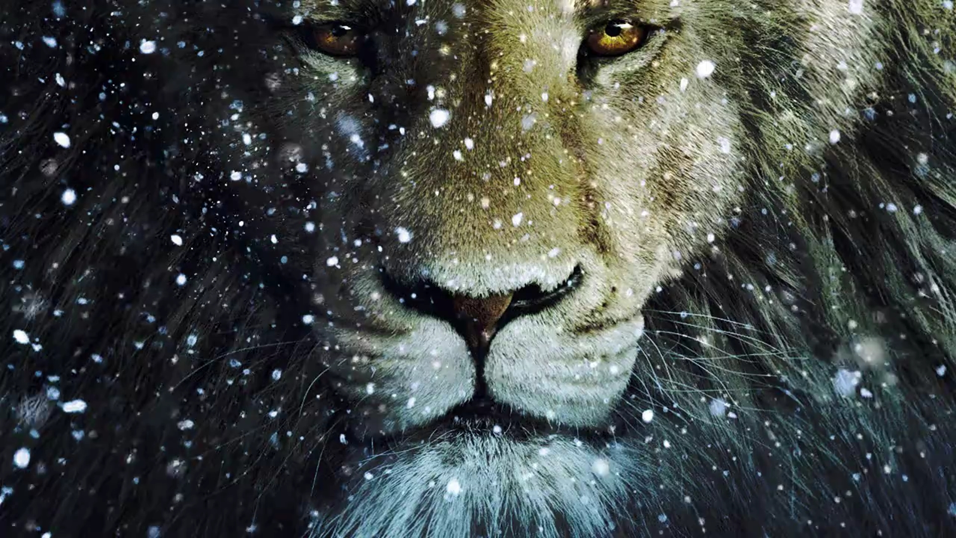 Aslan images aslan the king of narnia HD wallpaper and background ...